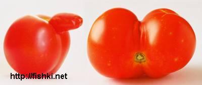 Порно овощное