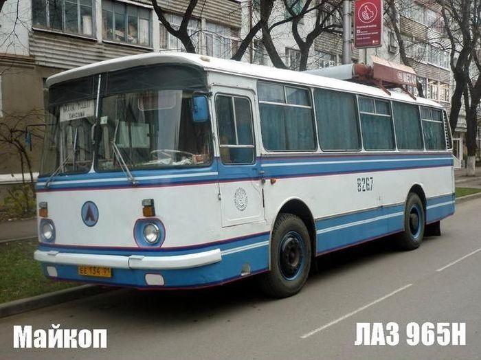 автобус, городской транспорт, общественный транспорт