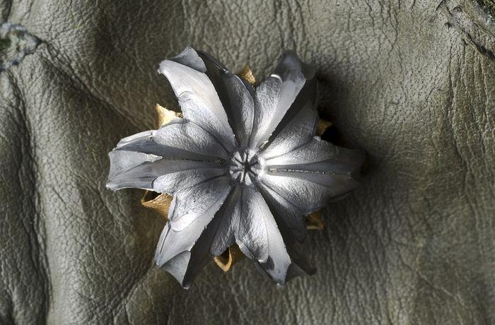 Попробуйте отгадать - что это за цветочек? (2 фото)