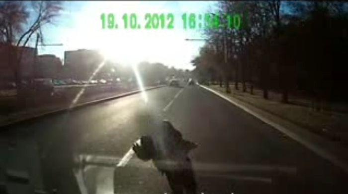 Авария дня часть 778 (фото+видео)