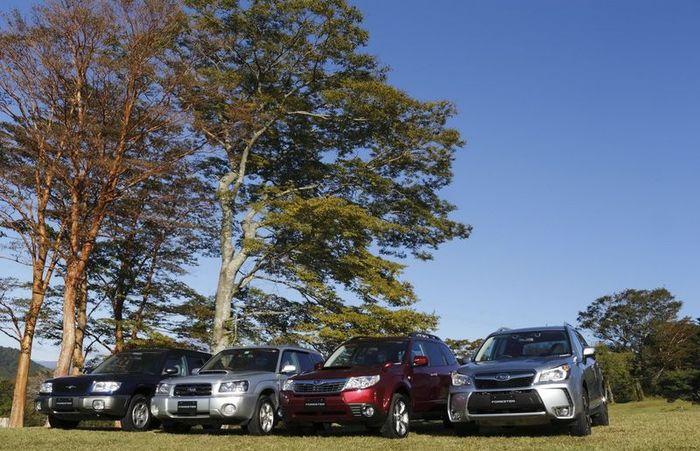 Новый Subaru Forester научился ездить по бездорожью (180 фото)