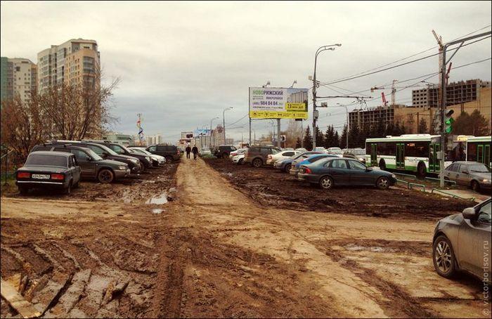 Быдло на тротуарах и газонах (10 фото)