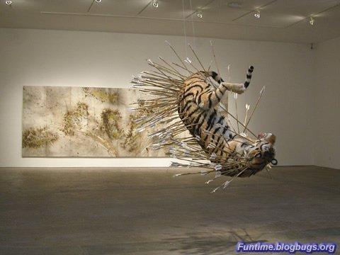 Волки и тигры - прикольный музей