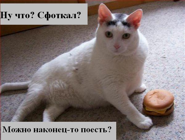 [Изображение: 008_animals.jpg]