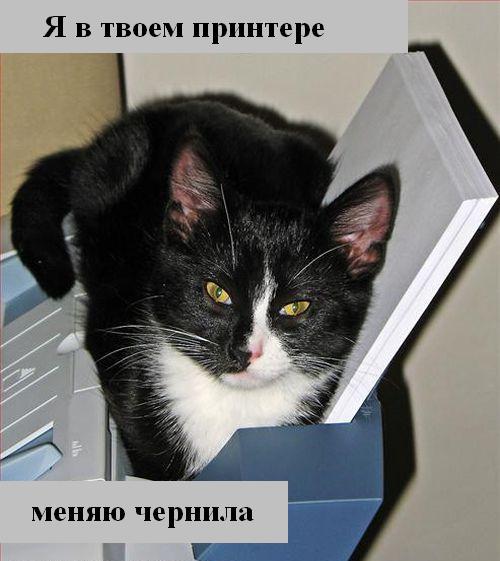 [Изображение: 016_animals.jpg]