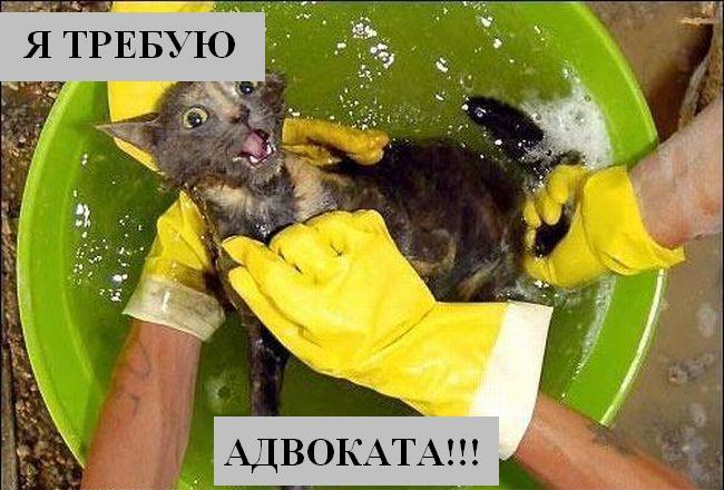 [Изображение: 017_animals.jpg]