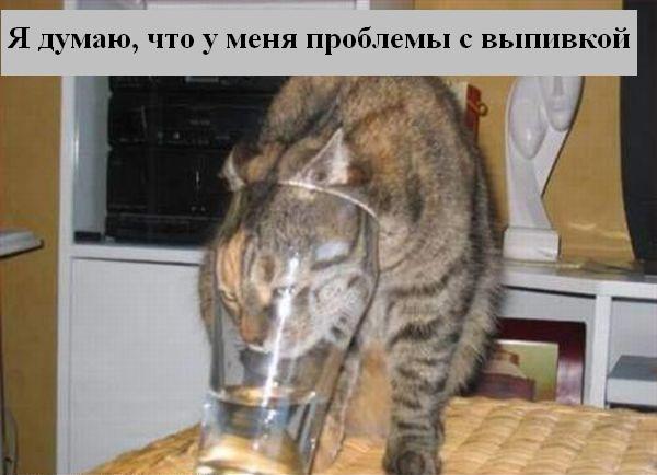 [Изображение: 019_animals.jpg]