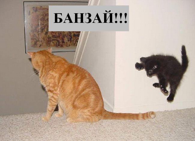 [Изображение: 029_animals.jpg]