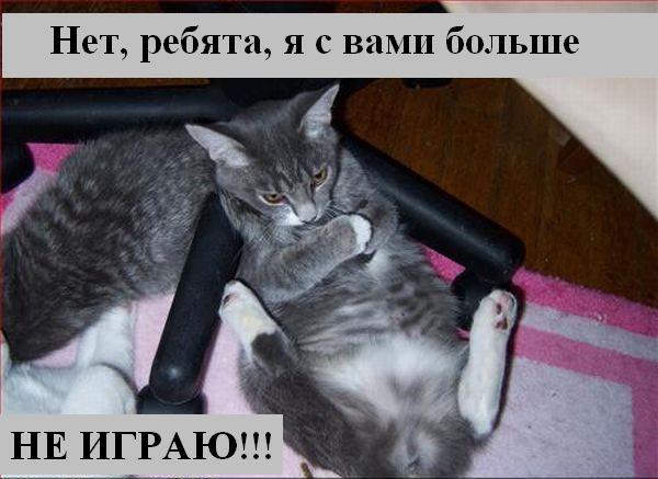 [Изображение: 033_animals.jpg]