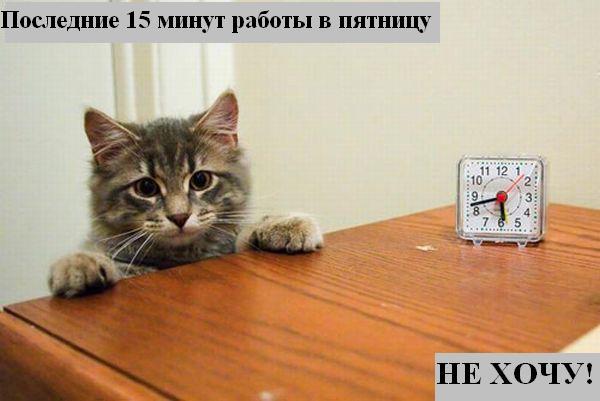 [Изображение: 039_animals.jpg]