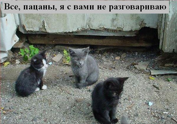 [Изображение: 042_animals.jpg]