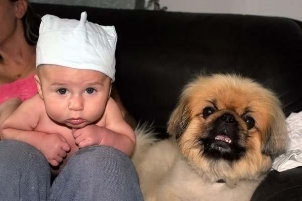 Дети и их собачьи друзья (34 фото)