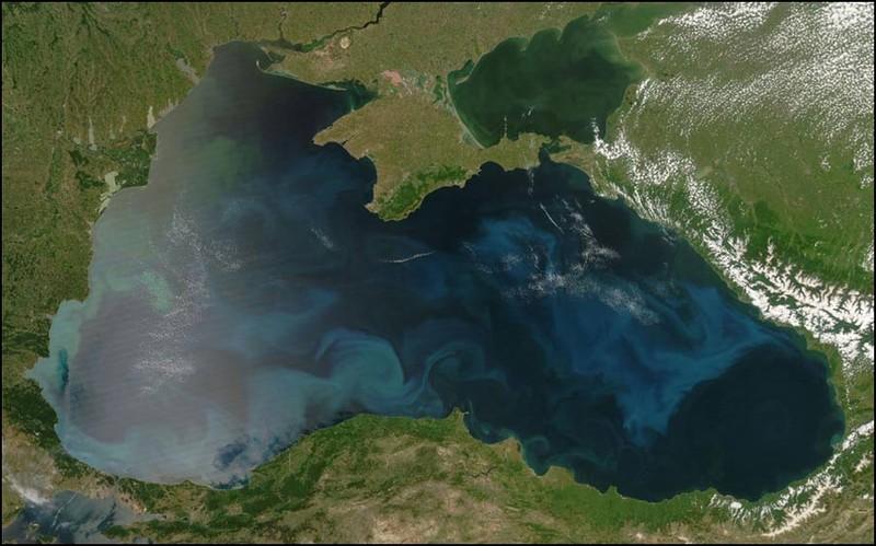 Фитопланктон в Черном море. Снимок сделан в естественных цветах.