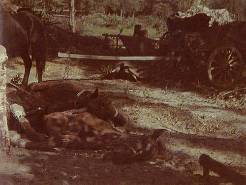 Минск-Белосток, 1941