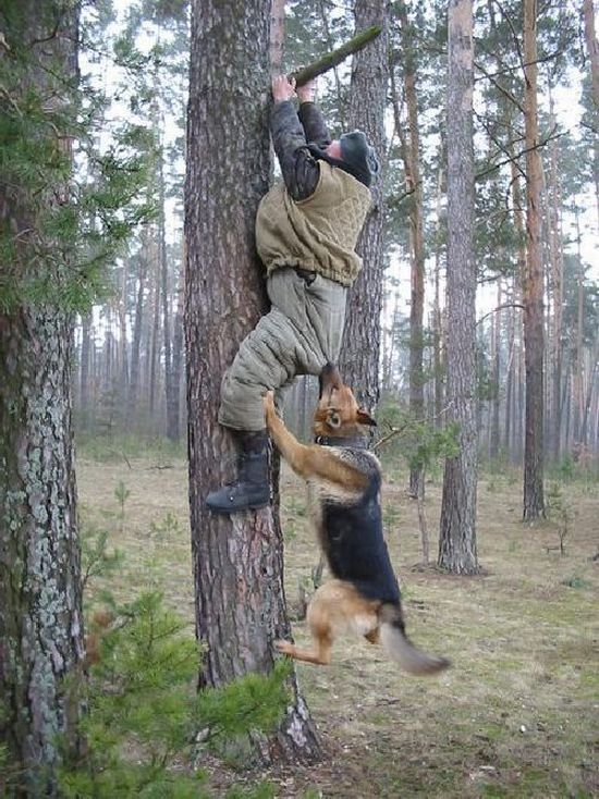 http://fishki.net/picsw/012010/14/post/natura/nature_04.jpg