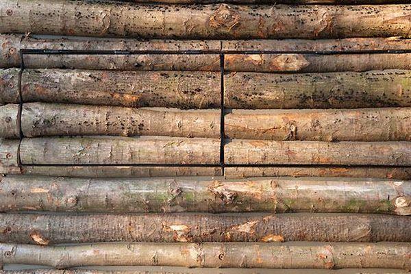 Жилая стопка бревен  (86 фото)