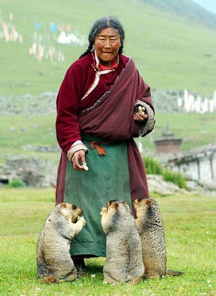 Фотографии из Тибета (7 фото)
