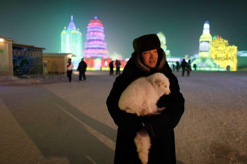 Женщина ждет туристов, желающих сфотографироваться с ее лисой, в Харбине 3 января 2010 года. (REUTERS/Aly Song)