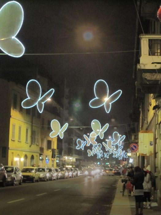 Светящиеся бабочки на миланских улицах (8 фото)