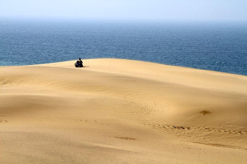 ...а наверху, постоянно гонимый ветром песок, молниеносно превращал отпечатки ног в причудливые узоры...