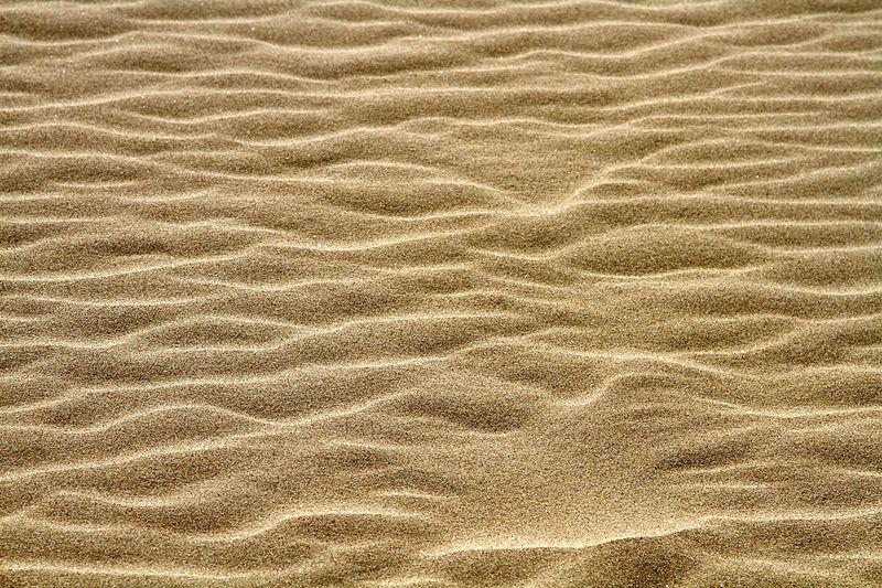 Пустыня Тоттори (18 фото + текст)