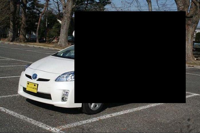 Необычный Toyota Prius для путешествий (13 фото)
