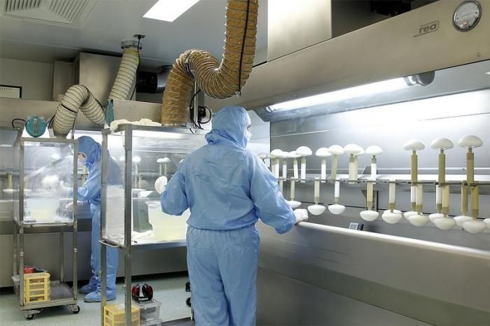 Производство силиконовых грудных имплантатов   (14 фото)