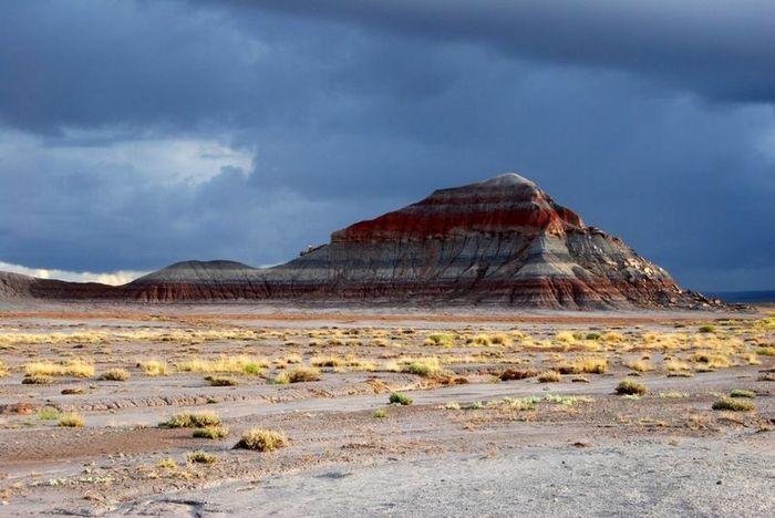 Нарисованная Пустыня, США (11 фото)
