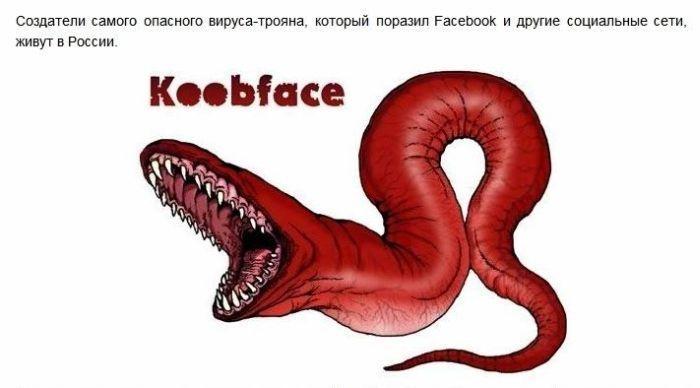 Создатели вируса Koobface живут в России (7 фото)