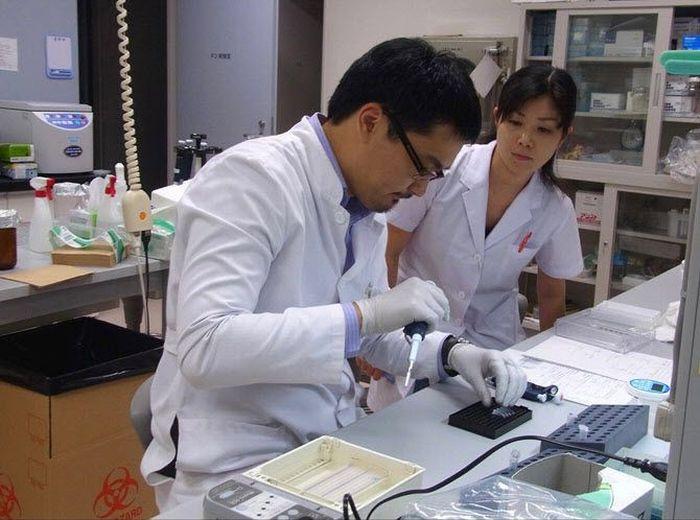 Один день врача-гепатолога в Японии (50 фото)