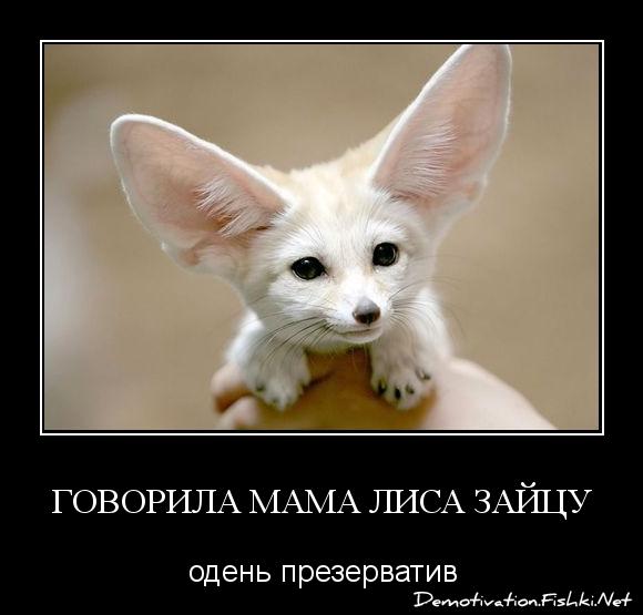 говорила мама лиса зайцу