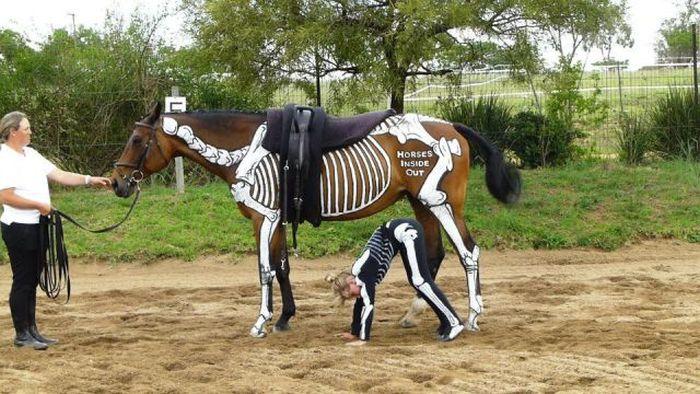 Отпадные фотки девушка, кости, костюм, лошадь, прикол, скелет