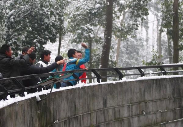 Gente estúpida en el Zoo Lev-0005