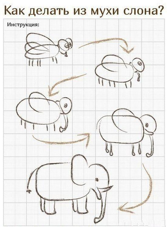 Бесплатный фотоприкол из мухи, инструкция, как сделать, картинка с надписью, рисунок, слона