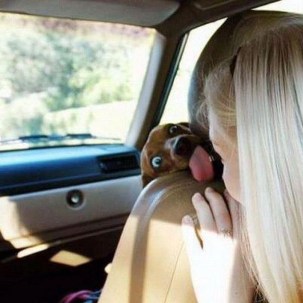 Блондинкав машине засветила всё что можно