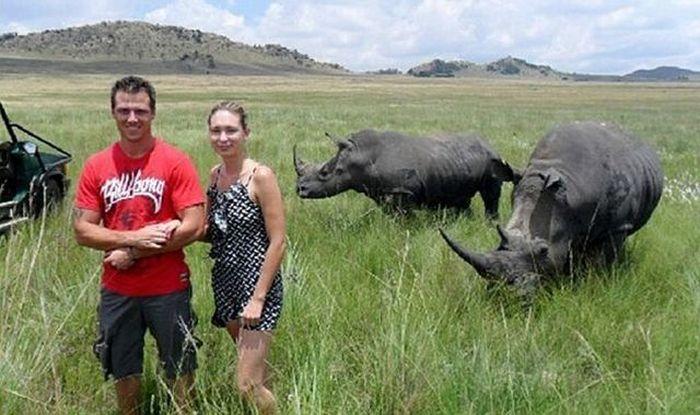 Смешные картинки атакуют, влюбленная пара, внезапно, дикие животные, заповедник, звери, носороги, сафари парк