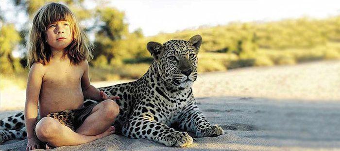 маугли, животные, звери, дикий мир, дикая природа, лев, слон, тигр