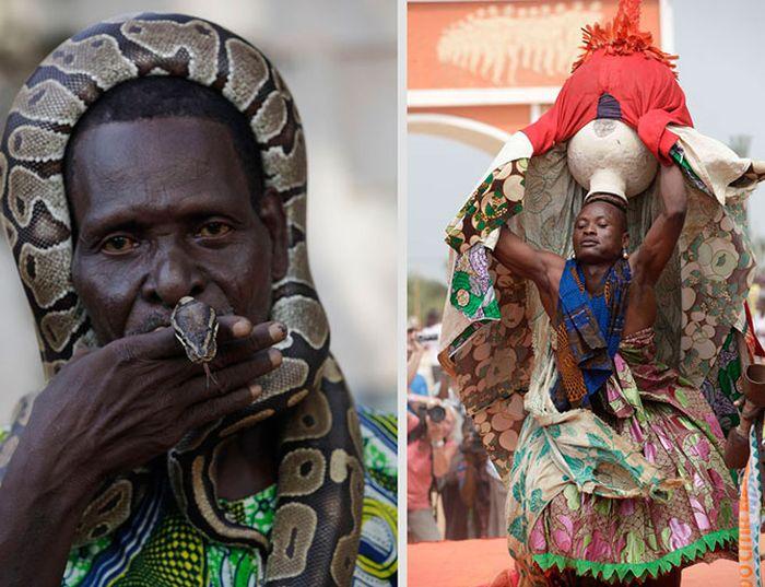африка, вуду, культура, религия, змея, питон, коза, кровь