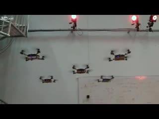 Подборка роликов от 18.01.2013