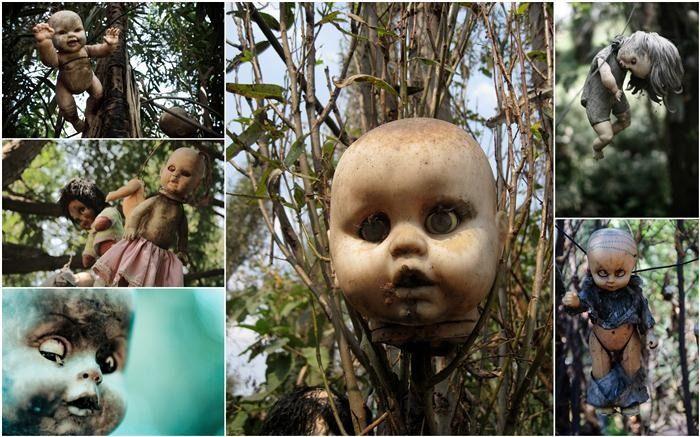 Фотоприкол бесплатно в лесу, жуткая фотка, куклы, страшные куклы