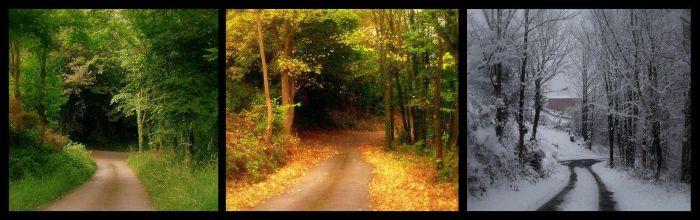 Юмор времена года, зима, крутые фотографии, лето, осень, сезоны