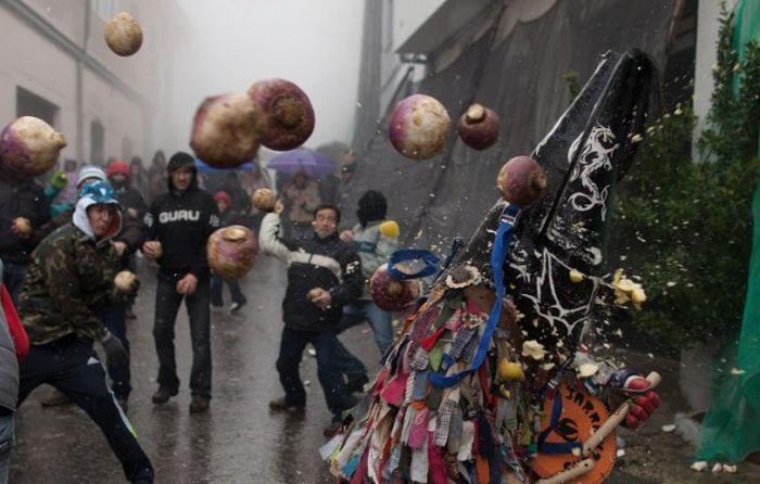 Фотоприкол фото восстание, грибы, митинг, обкидывают, пикет, протест, шествие