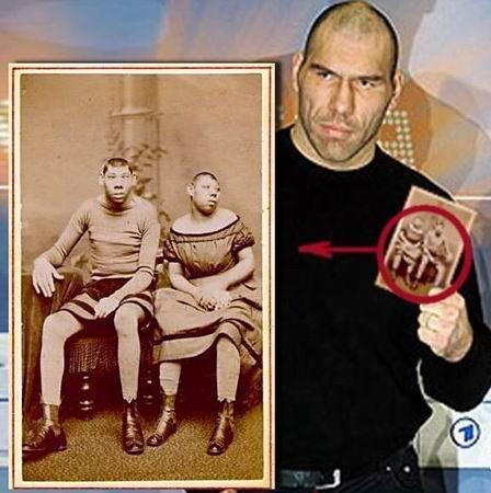 Валуев, Николай Сергеевич Википедия