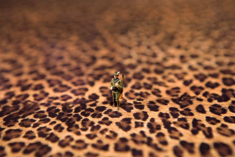 Такой маленький мир (90 фото)