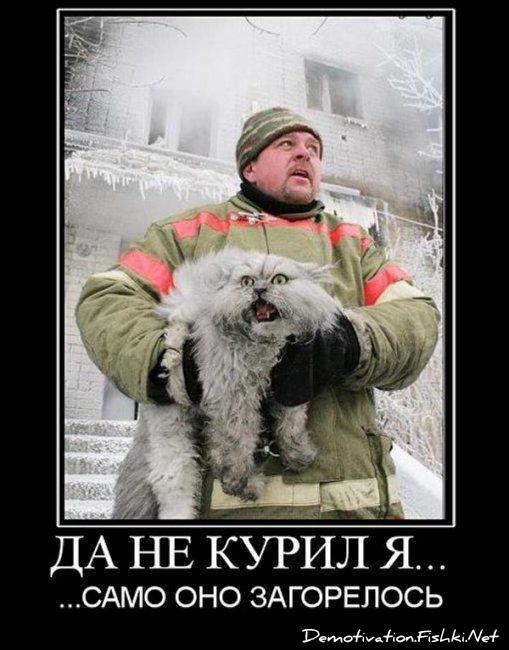http://fishki.net/picsw/022010/12/post/demotivator/1066.jpg