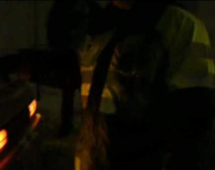 Общение с ГИБДД часть 243 (фото+видео)