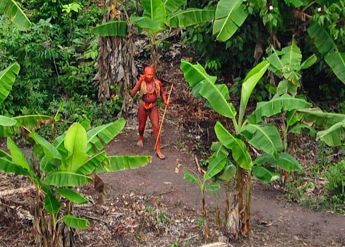 В бразильских джунглях обнаружили неизвестное племя индейцев (6 фото)