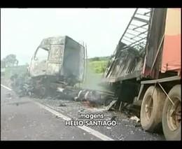 Анаконда стала причиной серьезной аварии