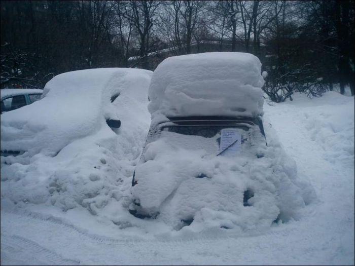Предприимчивый снежный помощник Михаил (2 фото)