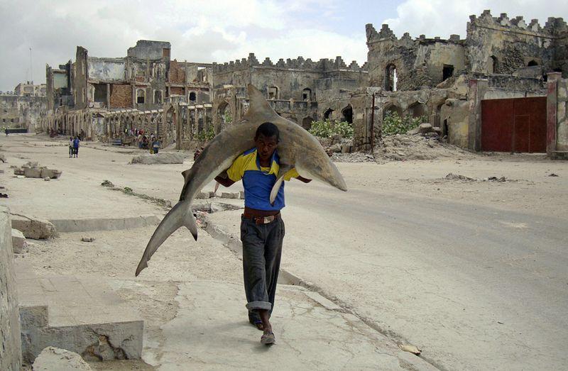 2. Человек с акулой на улицах Могадишу 23 сентября. Первое место в категории «Повседневная жизнь». (Omar Feisal, Somalia, for Reuters)